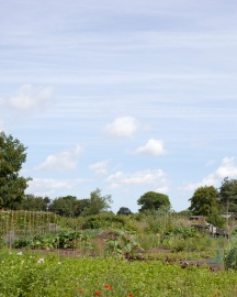 Allotment Keepers